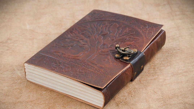 book Studii Majori