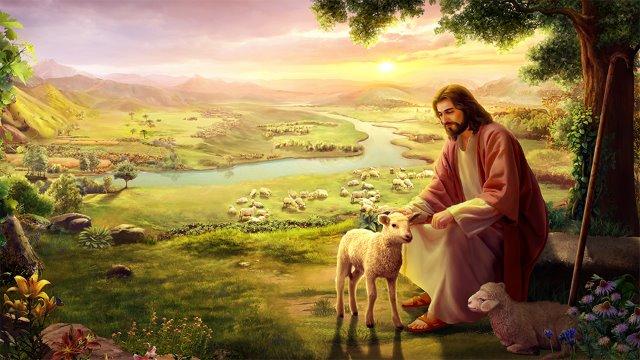 Jesus2 Studii Juniori