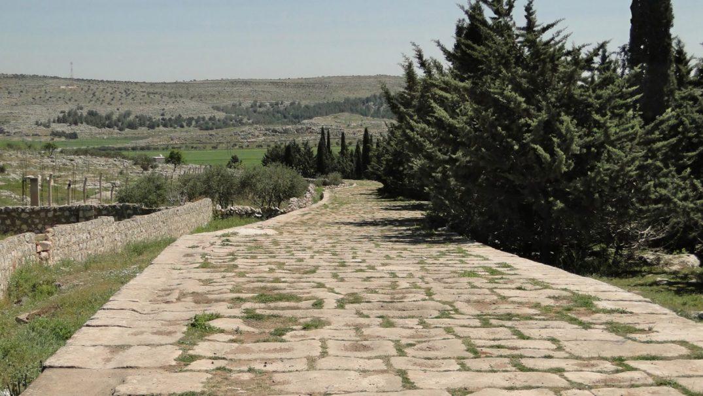 roman road at tall aqibrin 1600x900 Studii Majori