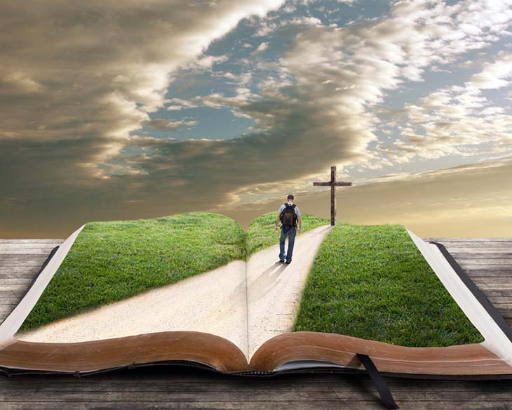homepage bible2 Studii Juniori