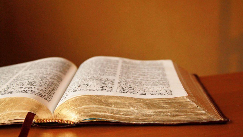 open bible religious stock photos Studii Adolescenți