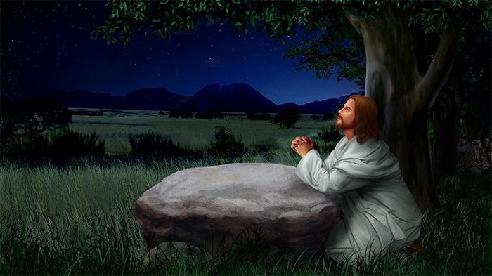 Jesus praying1 Studii Juniori