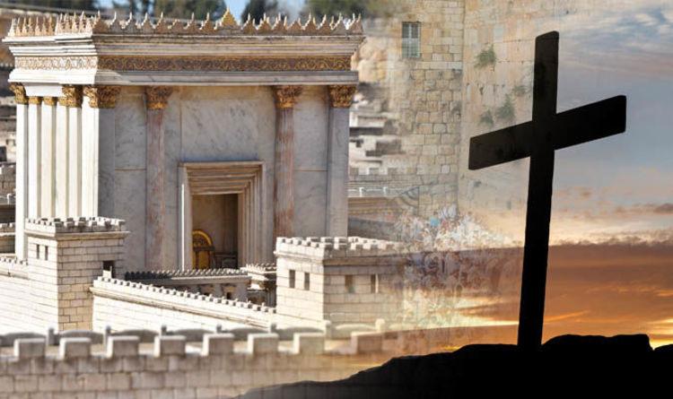 temple5 Studii Majori