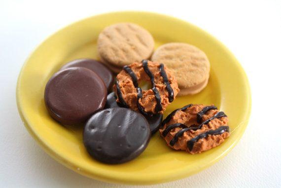 cookie Studii Juniori