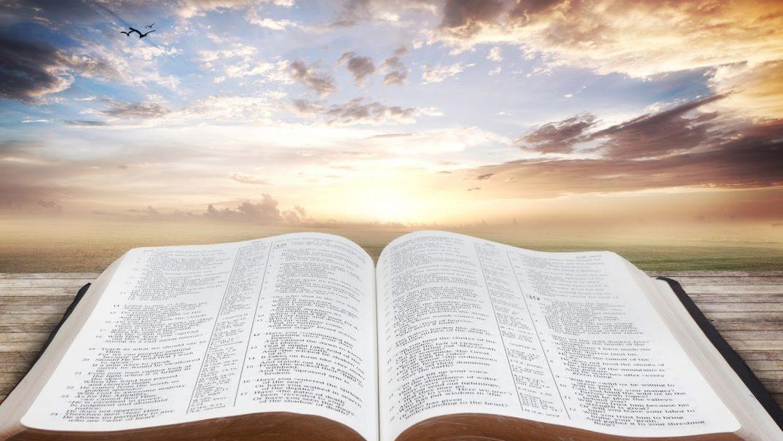 Bible f1 Studii Majori
