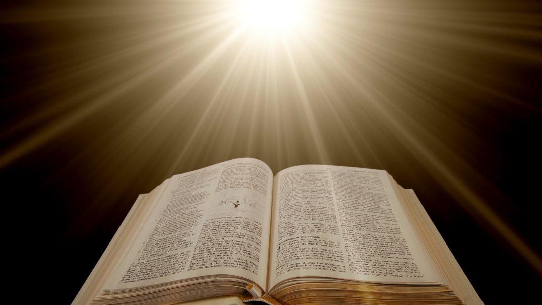 Bible 4 1 Biblia la rând