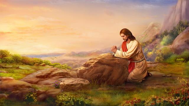 Jesus wilderness2 Studii Juniori