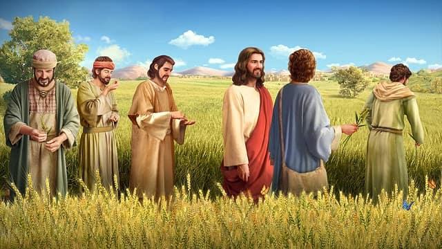 Jesus and w Studii Majori