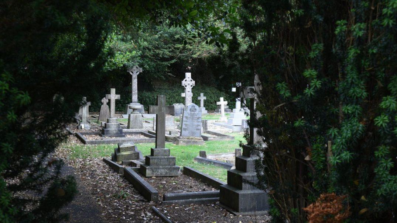 cemetery1 Studii Majori
