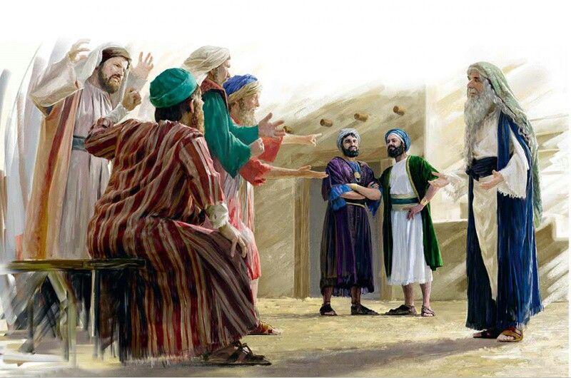 prophet3 Studii Juniori