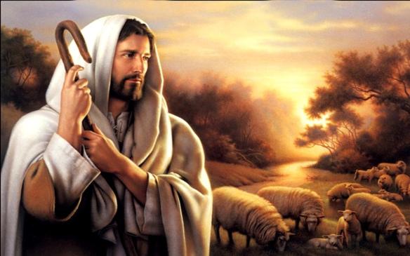 Jesus gentle Studii Majori
