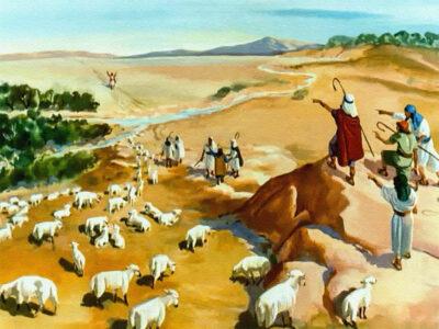 Joseph1 Studii Majori